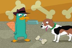 Perry, perry the platypus! Milo Murphys Law, Perry The Platypus, Murphy Law, Cartoon Profile Pictures, Phineas And Ferb, Disney Cartoons, Scooby Doo, My Favorite Things, Animation