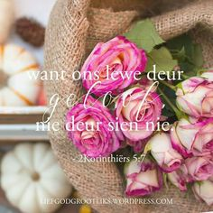 Goeie More, Afrikaans Quotes, Funny Emoji, Printable Quotes, Bible Scriptures, Gods Love, Christianity, Trust, Prayers