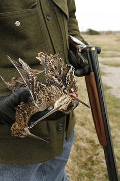 Hunting snipe in South Texas.