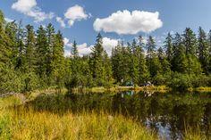 Die sagenhafte Schwarze Lacke Mountains, Nature, Travel, Tourism, Ghosts, Places, Naturaleza, Viajes, Destinations