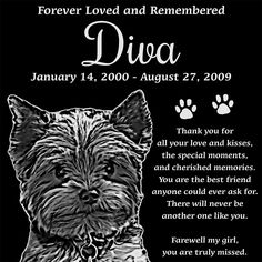 Personalized Yorkshire Terrier Pet Memorial 12'x12' Engraved Black Granite Grave Marker Head Stone Plaque DIV1 >>> Find out more details by clicking the image : Dog Memorials