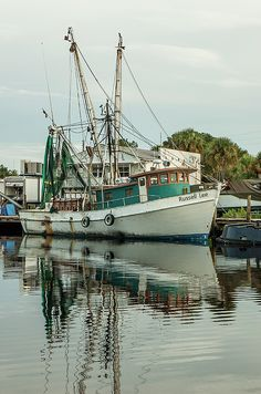 The shrimp boat the Russell Lee on an early Sunday morning on the Anclote River in Tarpon Springs Florida. Fishing Boats, Fly Fishing, Fishing Stores, Fishing Games, Fishing Pliers, Women Fishing, Crappie Fishing, Tarpon Springs Florida