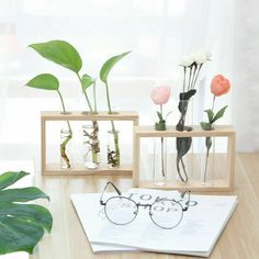 Clear Glass Test Tube Flower Pot Hydroponic Plant Vase Wooden Base Holder Decors | eBay