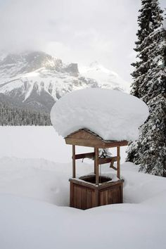 ..Well, and lots of snow, Canadian Rocky Mountains..
