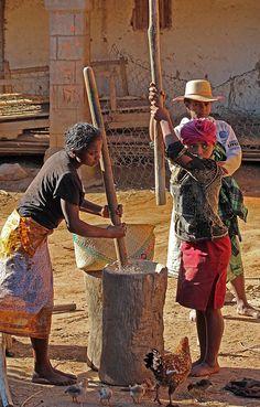 piler le riz Africa Art, East Africa, North Africa, African Life, African Women, Madagascar, Pays Francophone, Jah Rastafari, Brave