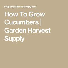 How To Grow Cucumbers | Garden Harvest Supply