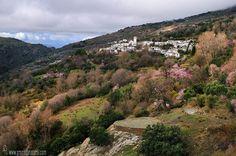 Las Alpujarras pueblo de La Tahá #Granada
