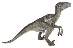 Papo Velociraptor Papo,http://smile.amazon.com/dp/B0036MDNNU/ref=cm_sw_r_pi_dp_jAJltb1TNE0TTYES