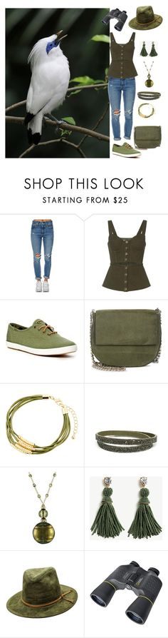 """""""Bird Watching"""" by christined1960 ❤ liked on Polyvore featuring Levi's, self-portrait, Keds, Gvyn, Fragments, Ann Taylor and National Geographic Home"""