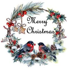 christmas images Christmas Wreath with Finches for print Christmas Bird, Christmas Drawing, Christmas Scenes, Christmas Paintings, Christmas Clipart, Vintage Christmas Cards, Christmas Images, Christmas Printables, Xmas Cards