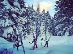 - Heaven on earth Heaven On Earth, Alps, Austria, Skiing, Shots, Mountains, Travel, Life, Outdoor