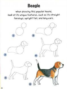 Latest Pic dog drawing tutorial Popular Wish to learn to draw? You're in the right place. Whether you're a starter searching for some su Drawing Lessons, Drawing Techniques, Drawing Tips, Art Lessons, Painting & Drawing, Drawing Drawing, Drawing Ideas, Learn Drawing, Mandala Drawing