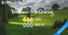 This one is perfect for my morning. Clean and fresh! What is in your diffuser?