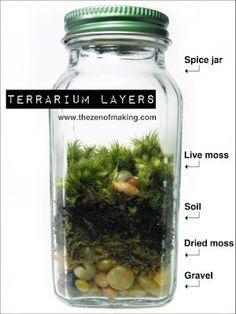 terrarium layers. diy garden in a jar