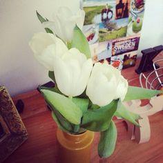 Blumen machen Freude! Neuer Artikel auf bootsmannundtornado.com