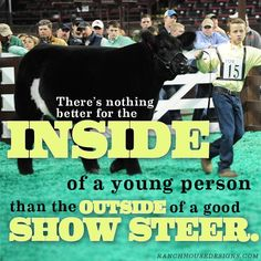 Livestock Motivation by Ranch House Designs. #livestockmotivation #stockshowlife #showtowin #livetoshow #agriculture