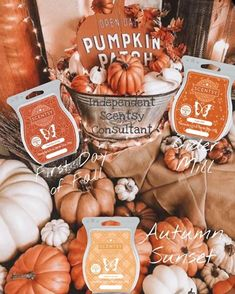 Autumn Cozy, Fall Winter, Scented Wax Warmer, Autumn Theme, Fall Harvest, Wax Melts, Scentsy, Fall Decor, The Best