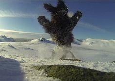 Cira på Ulriken Snowball