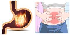 Com estes remédios naturais, você vai dar adeus à gastrite, azia e refluxo em pouco tempo! | Cura pela Natureza