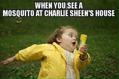 Charlie Sheen humor...BAHAHAHAHA