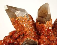 Spessartine garnet on Smoky Quartz from China