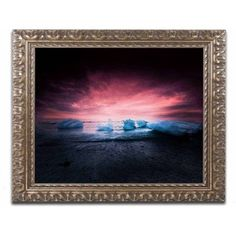 Trademark Fine Art 'Apocalyptic Beauty' Canvas Art by Philippe Sainte-Laudy, Gold Ornate Frame, Size: 11 x 14, Multicolor