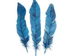 Popular items for feather painting on Etsy