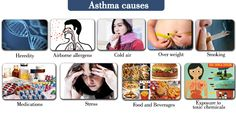 Various cause for Asthma.