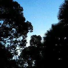 spot the moon