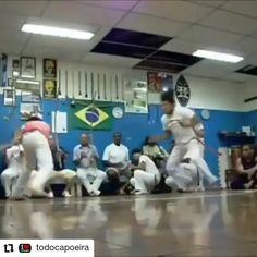 Animal Flow, Martial Arts Techniques, Martial Arts Workout, Martial Arts Women, Aikido, Science Art, Jiu Jitsu, Kung Fu, Africa