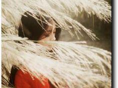 Tout passe comme le vent ... • Hellocoton.fr