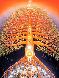 The Tree of Life; and this is how the story all begins