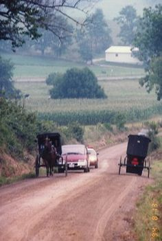 Follow an Amish Buggy outside Goshen, Indiana That can consume an entire afternoon.