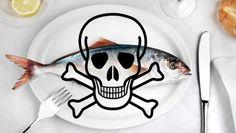 Devemos evitar comer peixe por causa do mercúrio? http://www.nutricaointegrativa.com/evitar-comer-peixe-por-causa-do-mercurio/