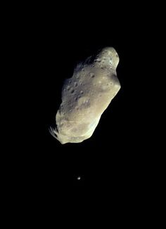 Ida and its moon. This color picture is made from images taken by the imaging system on the Galileo spacecraft about 14 minutes before its closest approach to asteroid 243 Ida on August 28, 1993. The range from the spacecraft was about 10,500 kilometers (6,500 miles). The images used are from the sequence in which Ida's moon was originally discovered; the moon is visible below the asteroid. Image credit: NASA #science #space #asteroid #astronomy