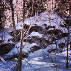 #cliffs #madriverglen #iftherestreesyoucanskiit Ski Magazine, Ski Club, Racing Events, East Coast, Vermont, Acre, Skiing, Mad, Snow