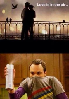 love is in the air  sheldon editions