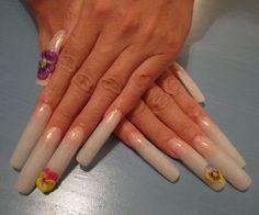 Daisy Nail Art, Rose Nail Art, Floral Nail Art, Pink Nail Art, French Manicure Acrylic Nails, Long Acrylic Nails, Nail Nail, Toe Nails, Hawaiian Nail Art