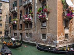 Venetian Balconies in Bloom | Flickr - Photo Sharing!