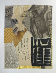 Bruce Schauble: Bibliotek