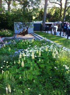 Luciano Giubbilei garden Chelsea '14