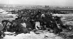 Piles of dead German bodies outside of Stalingrad, Feburary 1943