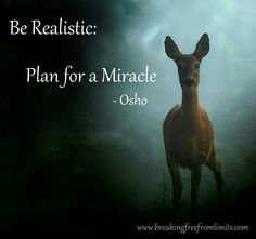 Be Realistic: Plan for a Miracle ~Osho ◘love this thought. I am a dreamer◘ Osho Quotes On Life, Words Quotes, Wise Words, Sayings, Qoutes, Quotes Images, Quotable Quotes, Attitude Quotes, Quotes Quotes