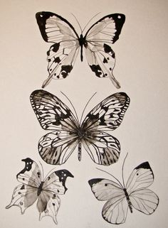 love this butterfly print from CreatedByStorm on Etsy.