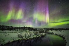 Winter auroras by Tiina Törmänen, via Behance