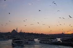 Istanbul at dusk, Süleymaniye Mosque in the back Best For Last, Blue Mosque, Grand Bazaar, Second World, Color Tile, Great View, Public Transport, City Life, Dusk