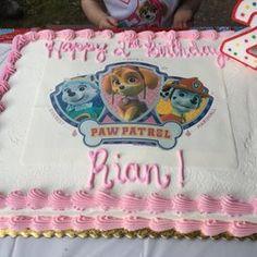 Paw Patrol Skye, Everest & Mars Licensed Edible Cake Topper #8430