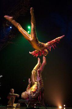 Cirque du Soleil.   Cirque Du Soleil - Varekai   Flickr - Photo Sharing!