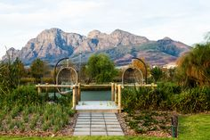 Located in South Africa's beautiful Western Cape Winelands and surrounded by the Simonsberg Mountains, Santé Wellness Retreat & Spa offers a multi-faceted approach to health, with three healing centers under one roof. Boulder Beach, Private Games, Luxury Tents, Spa Offers, Indoor Swimming Pools, Game Reserve, Yoga Retreat, South Africa, Detox