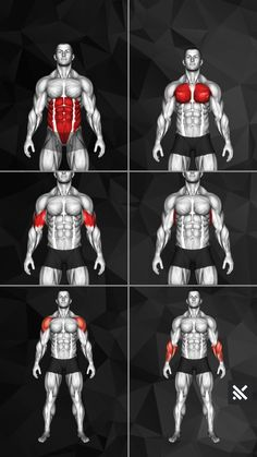 Fitness Workouts, Abs And Cardio Workout, Home Workout Men, Gym Workouts For Men, Gym Workout Chart, Full Body Gym Workout, Gym Workout Videos, Abs Workout Routines, Weight Training Workouts